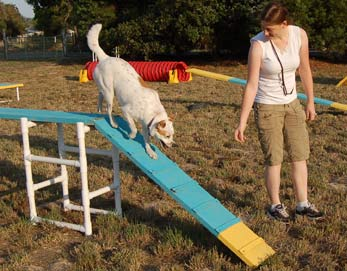 agility for fun